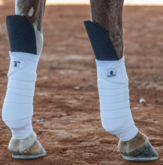 Classic Equine Knee Guard