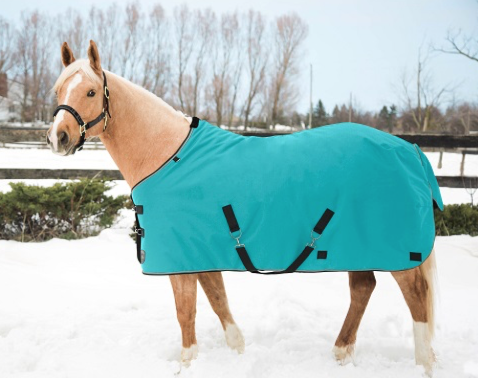 Kensington All Around Light Weight Turnout Turquoise